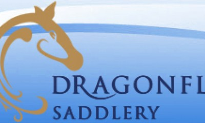 Qualified Saddle Fitters at Dragonfly Saddlery, Master Saddlers, Cornwall, Devon, Somerset, Dorset, Wiltshire and Gloucestershire