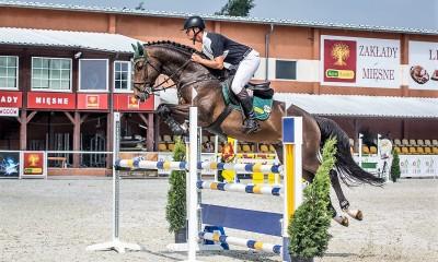 Amaru L- very good stallion by Larimar